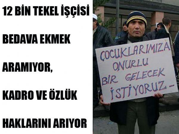 'TEKEL İŞÇİLERİ YOL GÖSTERİYOR'