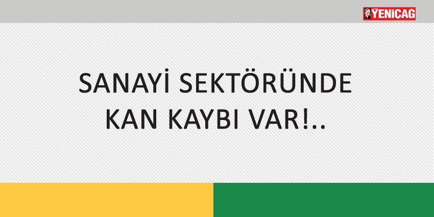SANAYİ SEKTÖRÜNDE KAN KAYBI VAR!..