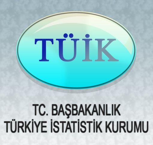 TÜİK TÜKETİCİ FİYATLARI ENDEKSİ  MAYIS / 2010