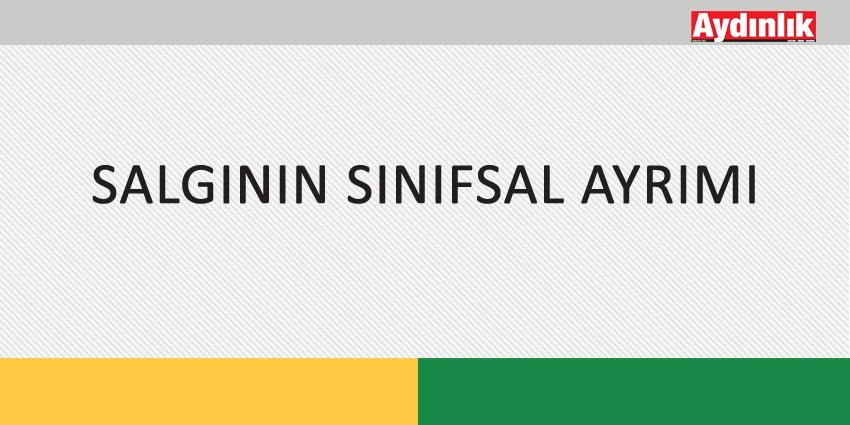 SALGININ SINIFSAL AYRIMI