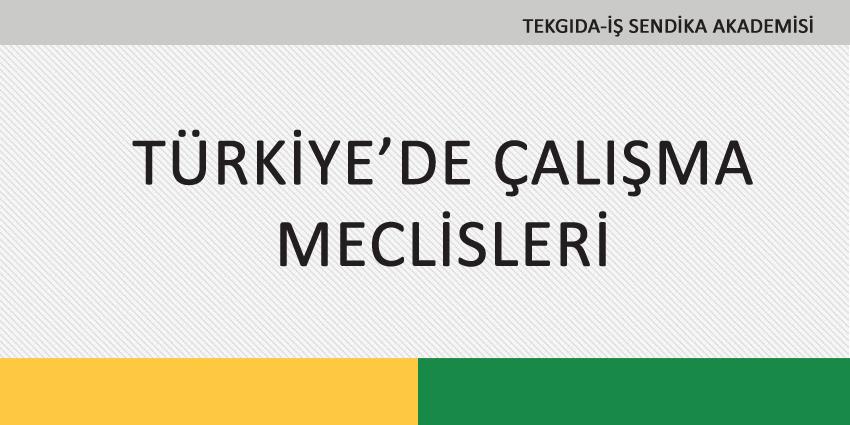 TÜRKİYE'DE ÇALIŞMA MECLİSLERİ